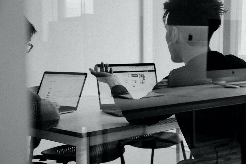 Digital Marketing Strategists Bear And Wolf DIgital